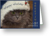 Blue Cat Greeting Cards - Yankee Cat Greeting Card by Joann Vitali