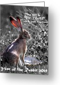 Hare Greeting Cards - Year of the Rabbit 2011 . Vertical bw Greeting Card by Wingsdomain Art and Photography
