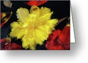 Designers Choice Painting Greeting Cards - Yellow And Red Flower Painting  Greeting Card by Don  Wright