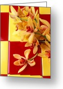 Orchids Photo Greeting Cards - Yellow and red orchids  Greeting Card by Garry Gay