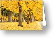 Fall Scene Greeting Cards - Yellow Autumn Wonderland Greeting Card by Carol Groenen