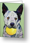 Dog Prints Greeting Cards - Yellow Ball Greeting Card by Pat Saunders-White
