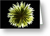 Iphonesia Greeting Cards - Yellow Burst Greeting Card by Mickey Hatt