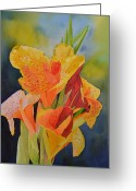 Canna Greeting Cards - Yellow Canna Greeting Card by Cynthia Sexton
