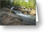 Yellow Dog Greeting Cards - Yellow Dog Falls 2 Greeting Card by Michael Peychich