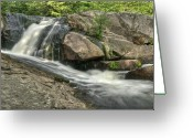 Yellow Dog Greeting Cards - Yellow Dog Falls 4 Greeting Card by Michael Peychich