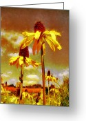 Echinacea Greeting Cards - Yellow Echinacea  Van Gogh style Greeting Card by Chris Thaxter