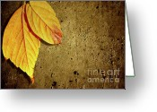 Maroon Greeting Cards - Yellow Fall Leafs Greeting Card by Carlos Caetano