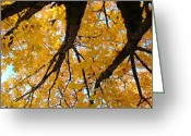 Favorites Greeting Cards - Yellow Fall Trees prints Autumn Leaves Greeting Card by Baslee Troutman Fine Art Prints