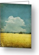 Stained Greeting Cards - Yellow field on old grunge paper Greeting Card by Setsiri Silapasuwanchai