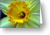 Bruster Greeting Cards - Yellow Floral Greeting Card by Clayton Bruster