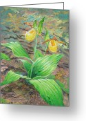 Woodlands Mixed Media Greeting Cards - Yellow Lady Slipper Greeting Card by Rose Wark
