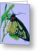 Photorealism Greeting Cards - Yellow Light Greeting Card by Mike Ivey