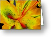 Diane Berry Digital Art Greeting Cards - Yellow Lily Greeting Card by Diane E Berry