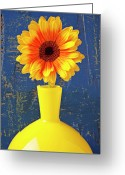 Chrysanthemum Greeting Cards - Yellow mum in yellow vase Greeting Card by Garry Gay