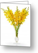 Oriental Flower Greeting Cards - Yellow Orchid In Crystal Vase Greeting Card by Atiketta Sangasaeng