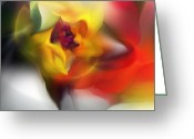 Contemporary Greeting Cards - Yellow Rose Fantasy Greeting Card by David Lane