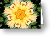 Roses Greeting Cards - Yellow Rose Kaleidoscope  Greeting Card by Cathie Tyler