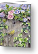 Wooden Fence Greeting Cards - Yellow warbler and morning glory Greeting Card by Patricia Pushaw