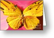 Wins Greeting Cards - Yellow Wins Greeting Card by Nereida Slesarchik Cedeno Wilcoxon