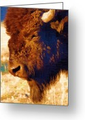 Diane Berry Digital Art Greeting Cards - Yellowstone Buffalo Greeting Card by Diane E Berry