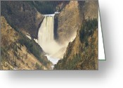 Lower Yellowstone Falls Greeting Cards - Yellowstone Falls And Grand Canyon Greeting Card by Tim Fitzharris