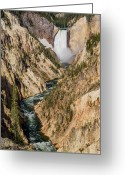 Lower Yellowstone Falls Greeting Cards - Yellowstone Falls from Artists Point Greeting Card by Greg Nyquist