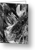 Lower Yellowstone Falls Greeting Cards - Yellowstone Waterfalls in Black and White Greeting Card by Sebastian Musial