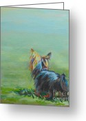 Terrier Greeting Cards - Yorkie in the Grass Greeting Card by Kimberly Santini