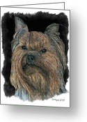 Pure Digital Art Greeting Cards - Yorkshire Terrier Greeting Card by Larry Linton