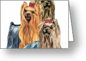 Terriers Greeting Cards - Yorkshire Terriers Greeting Card by Kathleen Sepulveda