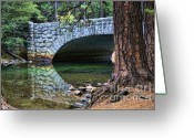 Chuck Kuhn Photography Greeting Cards - Yosemite Creek Greeting Card by Chuck Kuhn