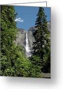 Yosemite Creek Greeting Cards - Yosemite Falls 15 Greeting Card by LeeAnn McLaneGoetz McLaneGoetzStudioLLCcom