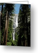 Yosemite Creek Greeting Cards - Yosemite Falls 3 Greeting Card by LeeAnn McLaneGoetz McLaneGoetzStudioLLCcom