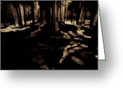 Backlit Greeting Cards - Yosemite Forest Greeting Card by Bonnie Bruno