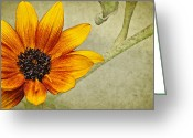 Yellow Flower Digital Art Greeting Cards - You Are My Sunshine Greeting Card by Lois Bryan