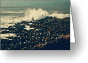 Crashing Waves Greeting Cards - You Came Crashing Into My Heart Greeting Card by Laurie Search