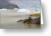 Skagway Greeting Cards - You Wont Believe Mendenhall Glacier Greeting Card by Mindy Newman