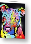Pit Bull Greeting Cards - Young Bull Pitbull Greeting Card by Dean Russo