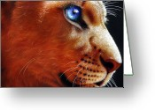 Lion Greeting Cards - Young Lion Greeting Card by Jurek Zamoyski