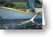 Paddles Greeting Cards - Young Man Paddling A Canoe In Calm Greeting Card by Bill Curtsinger