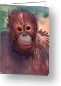 Orangutans Greeting Cards - Young Orangutan Greeting Card by Donald Maier