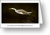Onyonet Photo Studios Greeting Cards - Your Dreams Wont Take Flight If You Dont Try Greeting Card by  Onyonet  Photo Studios