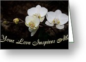 Bud Mixed Media Greeting Cards - Your Love Inspires Me Greeting Card by Andee Photography