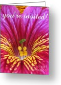 Inside You Greeting Cards - Youre Invited Greeting Card by Tina Marie