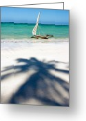 Tanzania Greeting Cards - Zanzibar Beach Greeting Card by Adam Romanowicz