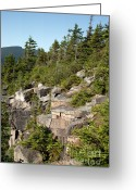 Mountain Summit Greeting Cards - Zeacliff Mountain - White Mountains New Hampshire USA Greeting Card by Erin Paul Donovan