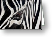Animal Greeting Cards - Zebra Eye Greeting Card by Ilse Kleyn