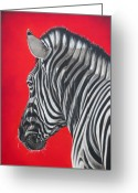 Black And White Greeting Cards - zebra in African sun Greeting Card by Ilse Kleyn