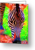 Stripes Greeting Cards - Zebra . Photoart Greeting Card by Wingsdomain Art and Photography